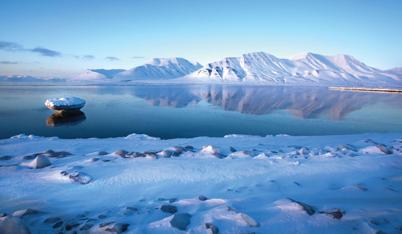 Arctic and Antarctica