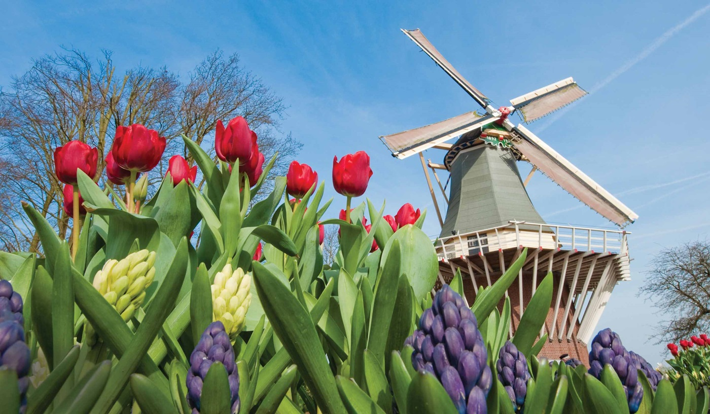Netherlands & Belgium Escorted Cruises