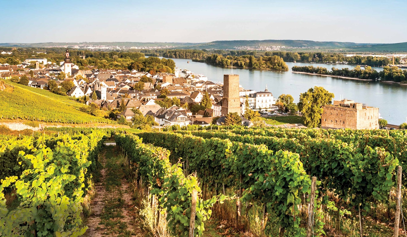 Rhine River Cruising