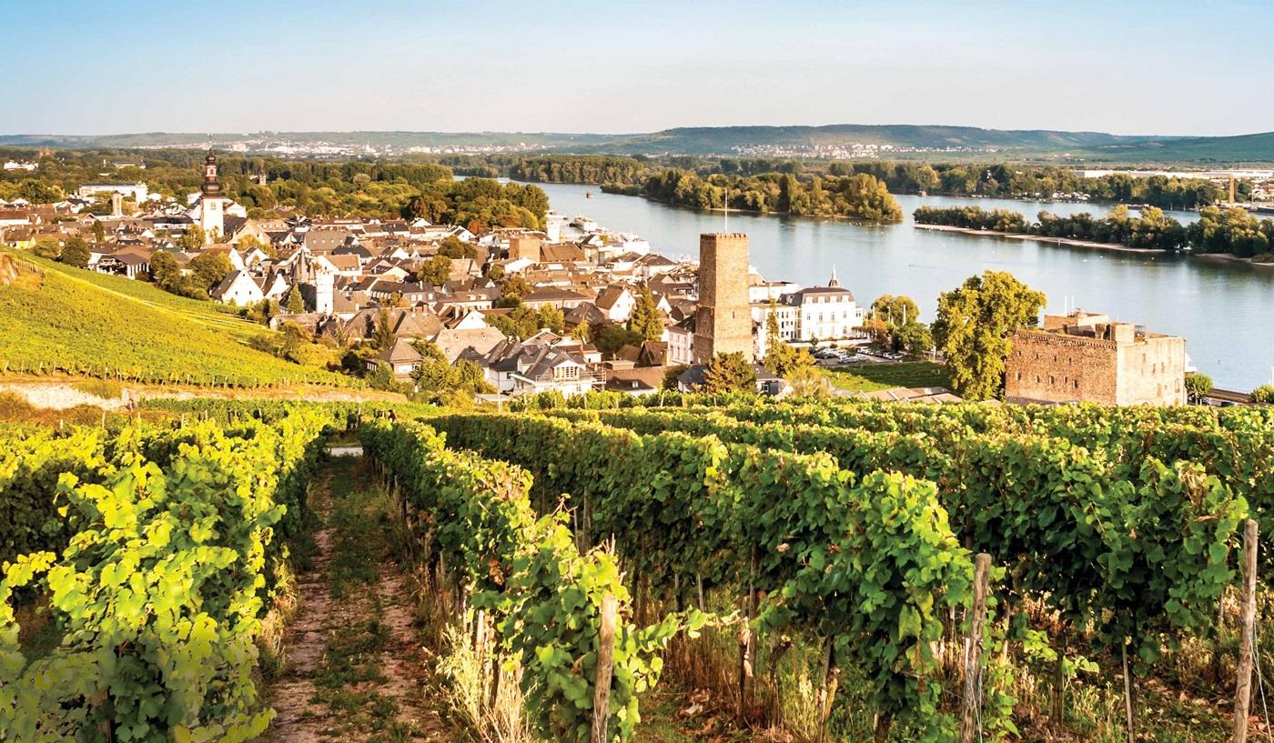 Rhine River Cruising