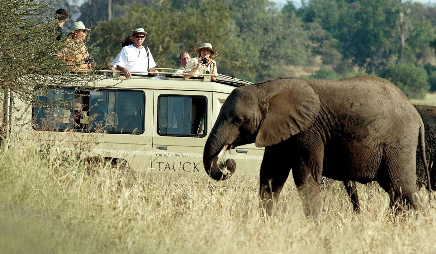 Tauck African Safari Tours