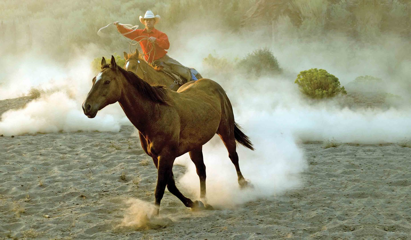 Legends American West National Park Escorted Tour