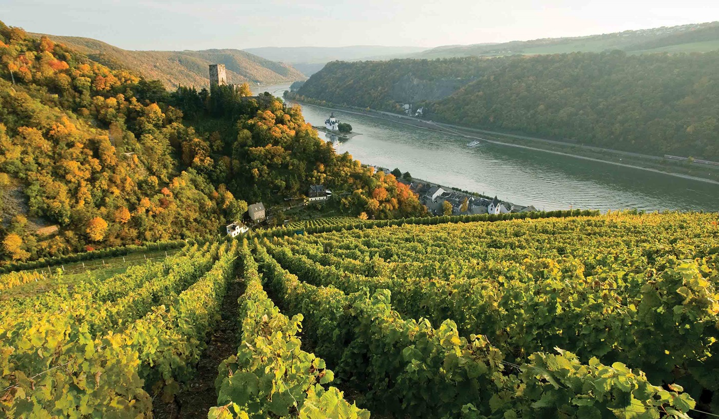 Germany River Cruises