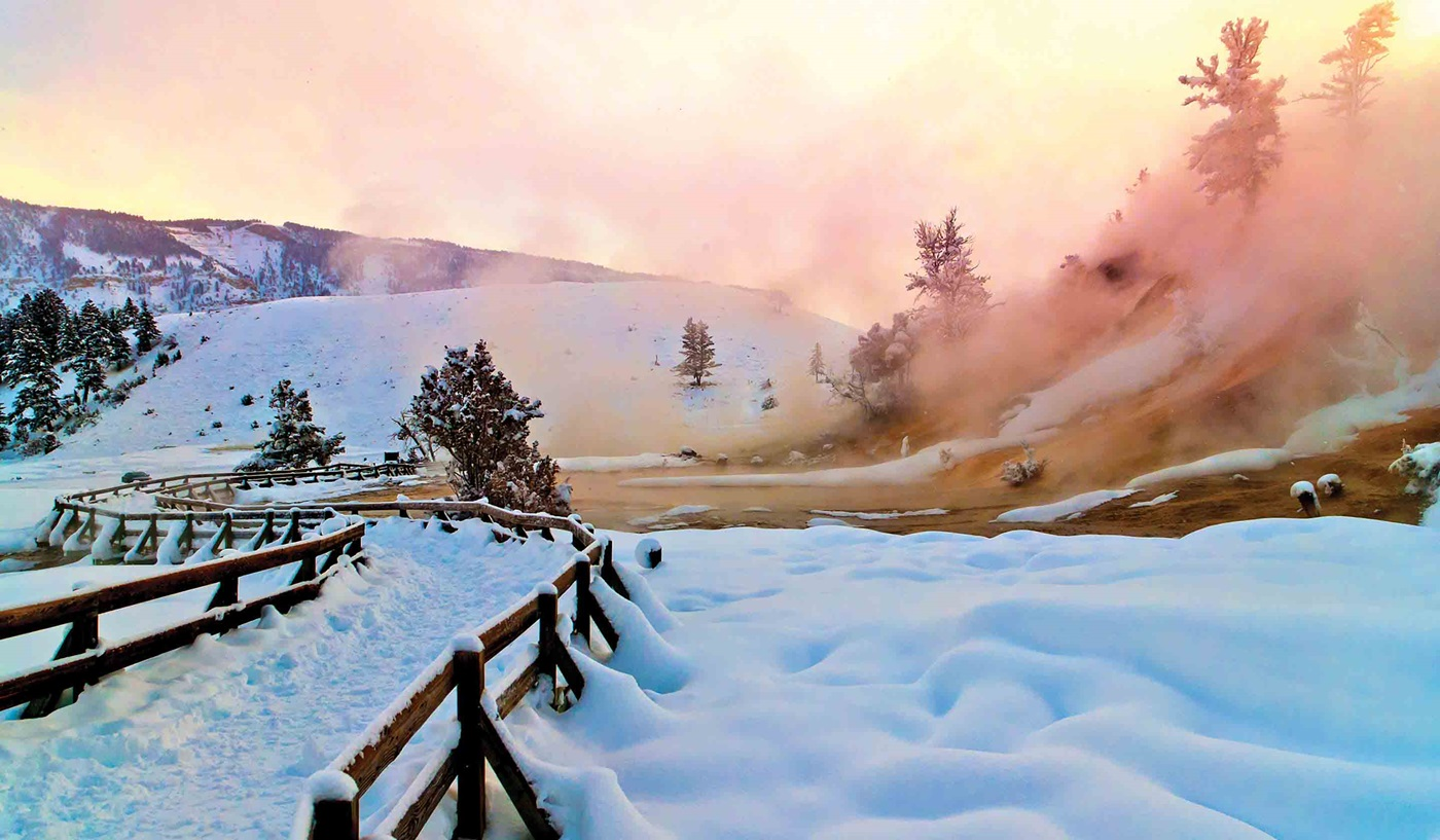 Wonderland Yellowstone Winter Escorted Tour