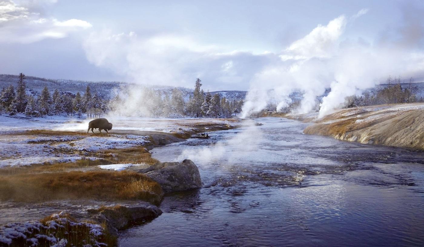 Wonderland Yellowstone Winter Escorted Tour