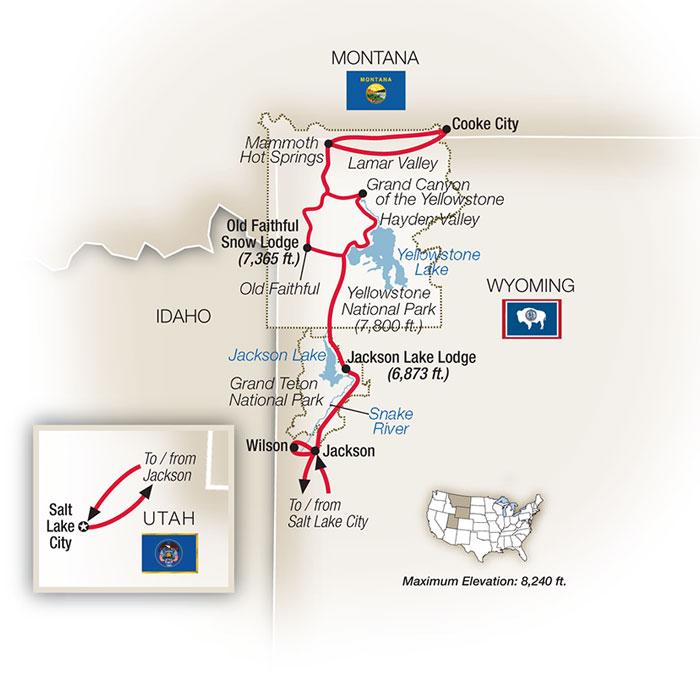 American Safari Tetons Yellowstone Guided Tour